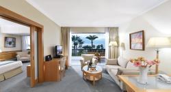 Superior One Bedroom Suite SV