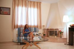 Family room-Sofa bed