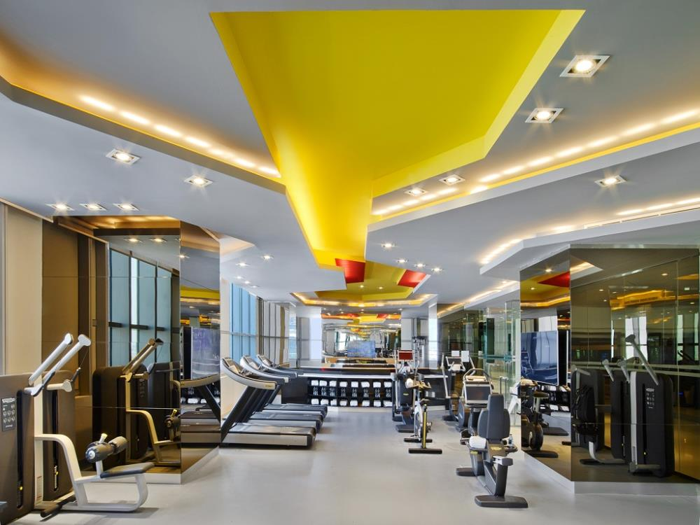 V-Hotel-Dubai-Curio-Collection-by-Hilton-Gym