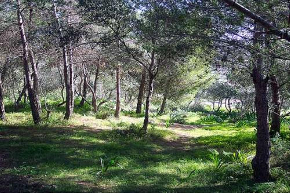 Porto Azzurro Studios Miziep Nature Park