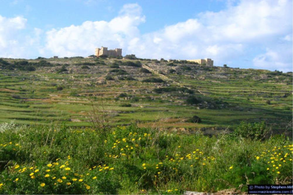Porto Azzurro Studios Selmun Hill