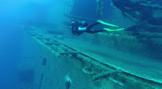 Zenobia Wreck Dive